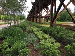 Garden Club of Virginia 62nd Annual GCV Conservation Forum - The Urban Landscape